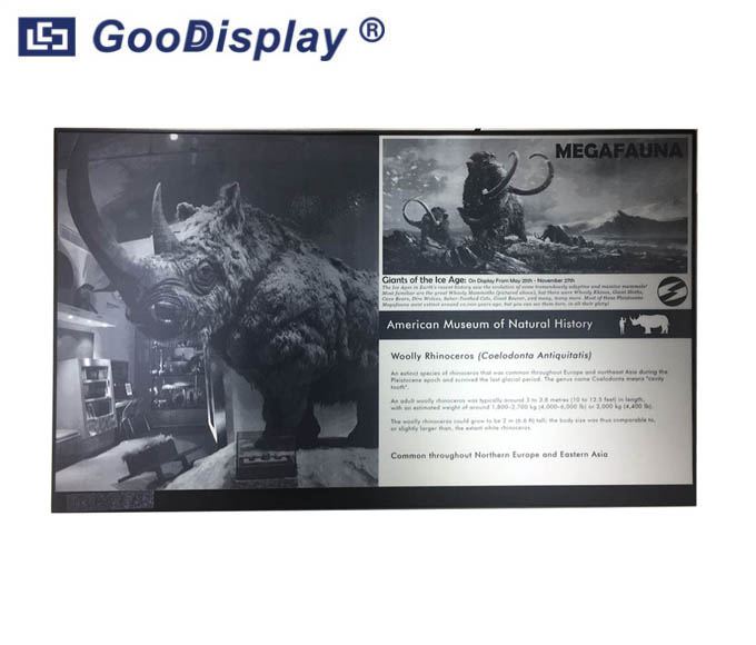 Parallel largest e ink screen panel 32 inch e-paper display, GDEP312TT2-D